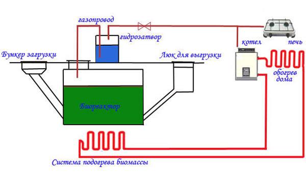 Сделать своими руками биогазовою